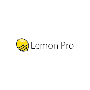 Opieka informatyczna w małych firmach - LEMON PRO